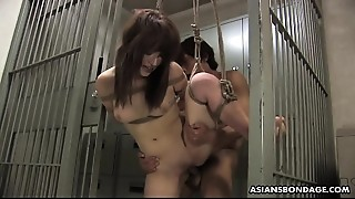 Bound Exotic sweetheart gets drilled with force behind the bars
